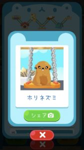 animal14