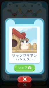 animal2