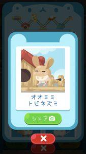 animal22