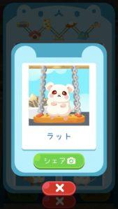 animal24