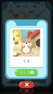 animal7